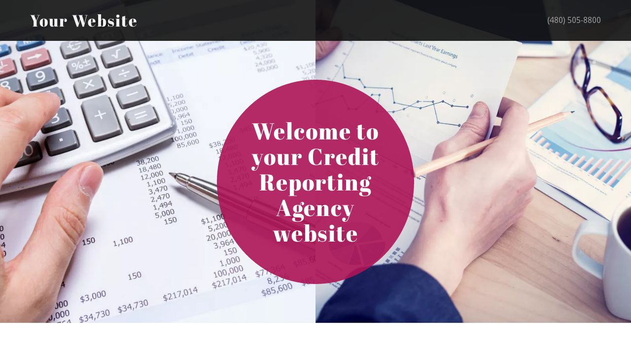 Credit Reporting Agency Website: Example 3