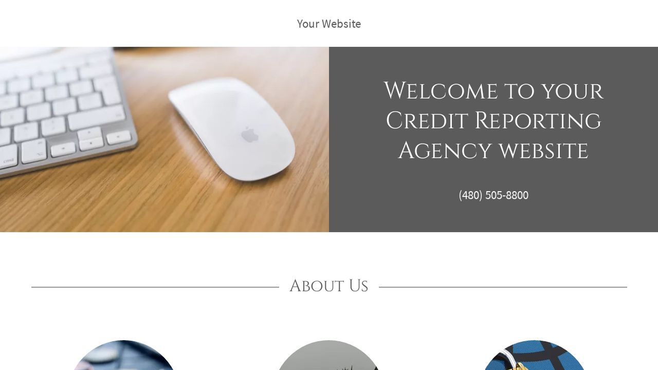 Credit Reporting Agency Website: Example 4