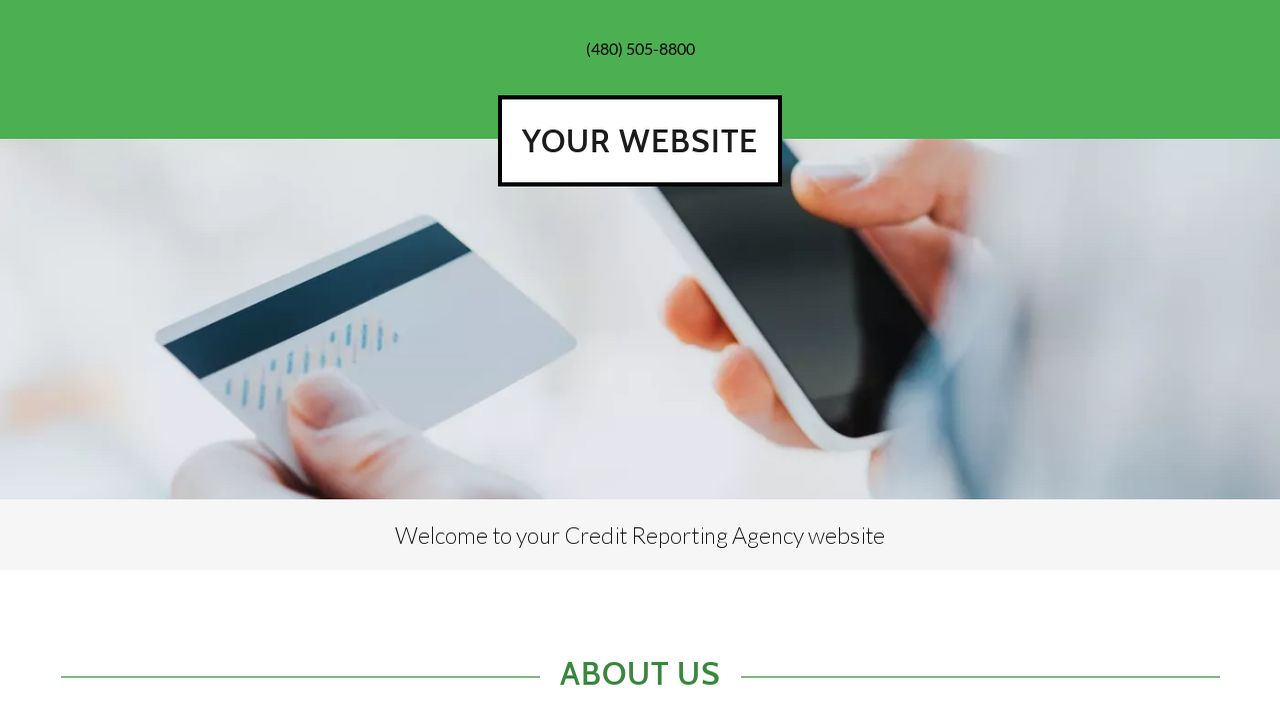 Credit Reporting Agency Website: Example 5