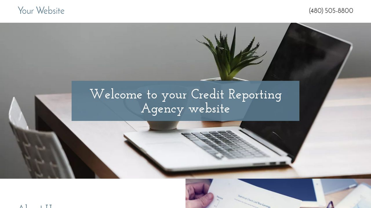 Credit Reporting Agency Website: Example 6