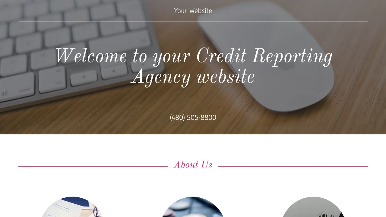 Credit Reporting Agency Website: Example 9