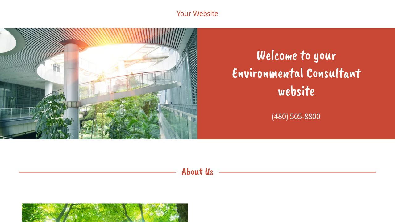 Environmental Consultant Website: Example 1