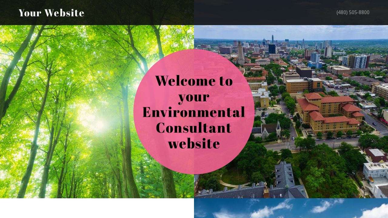 Environmental Consultant Website: Example 17