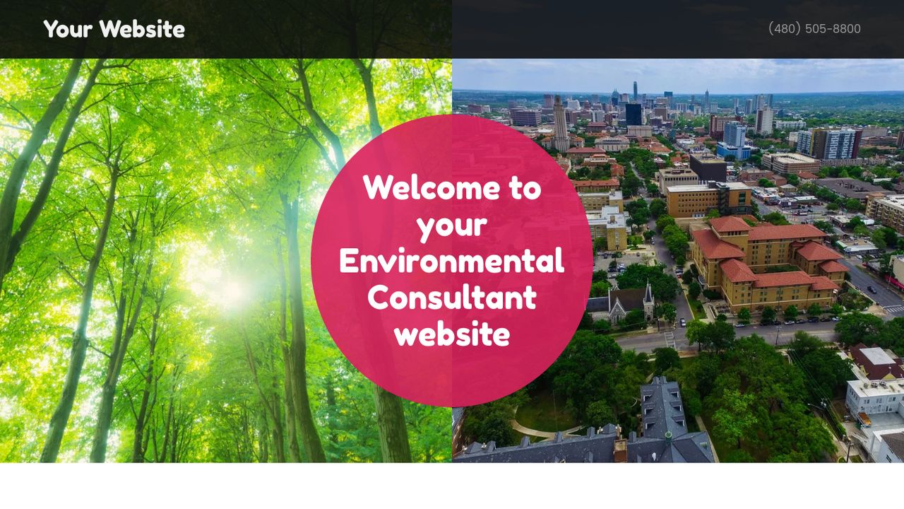 Environmental Consultant Website: Example 3