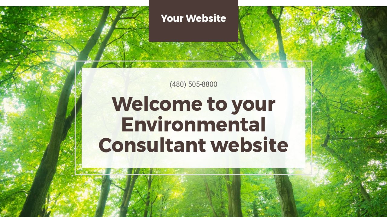Environmental Consultant Website: Example 4