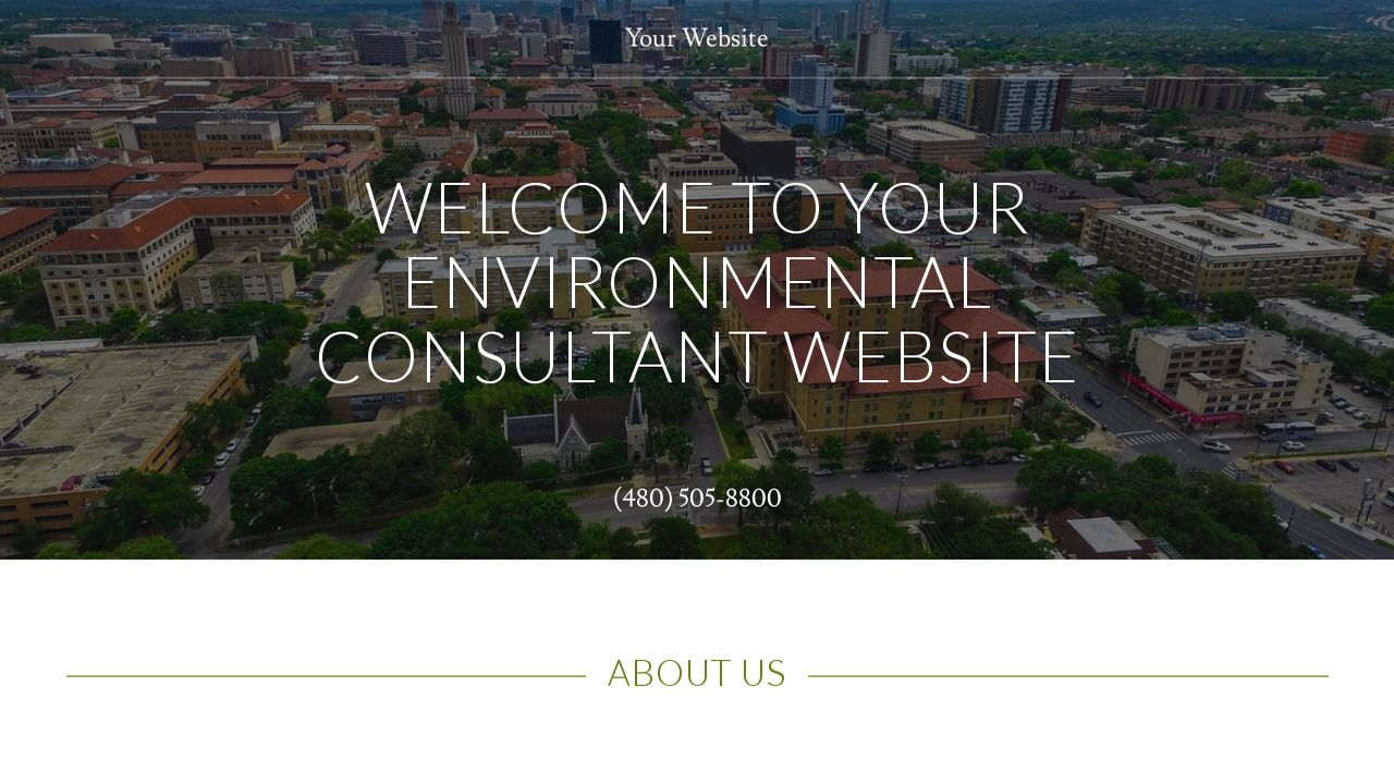 Environmental Consultant Website: Example 6