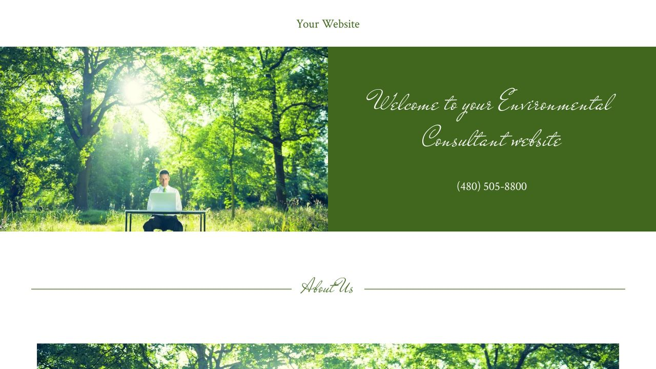 Environmental Consultant Website: Example 8
