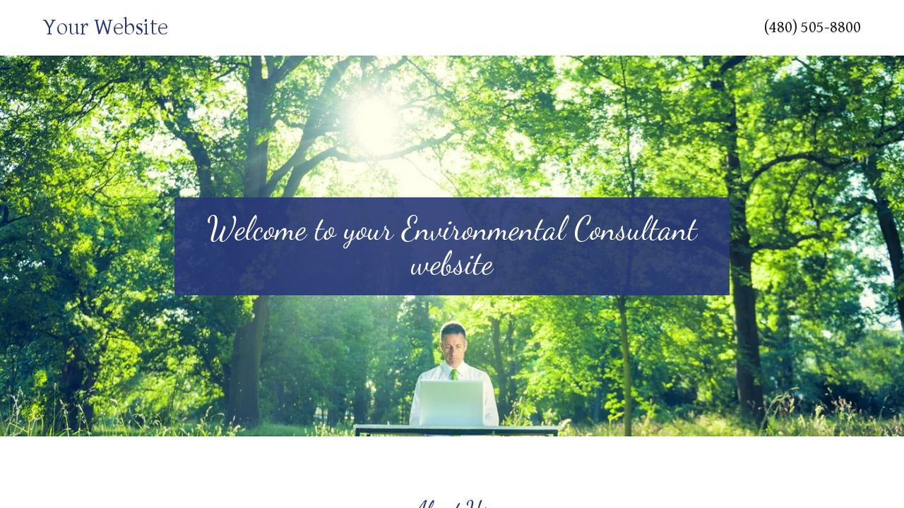 Environmental Consultant Website: Example 9