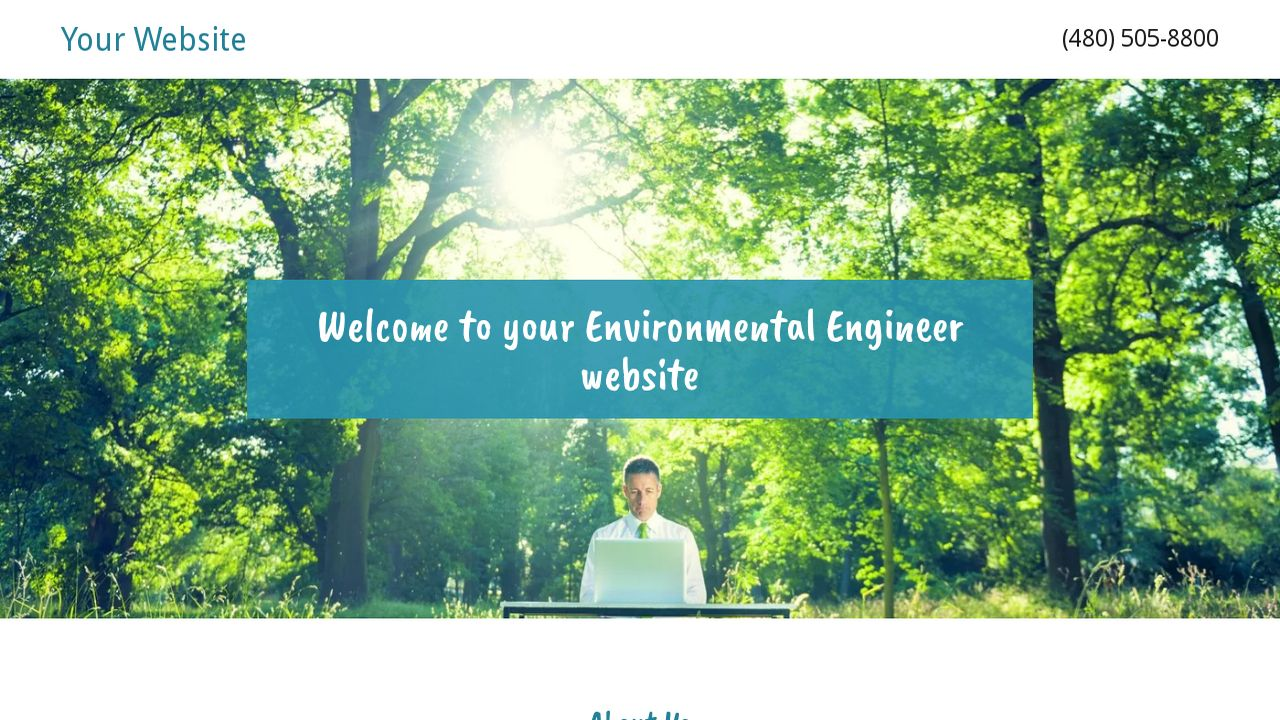 Environmental Engineer Website: Example 15
