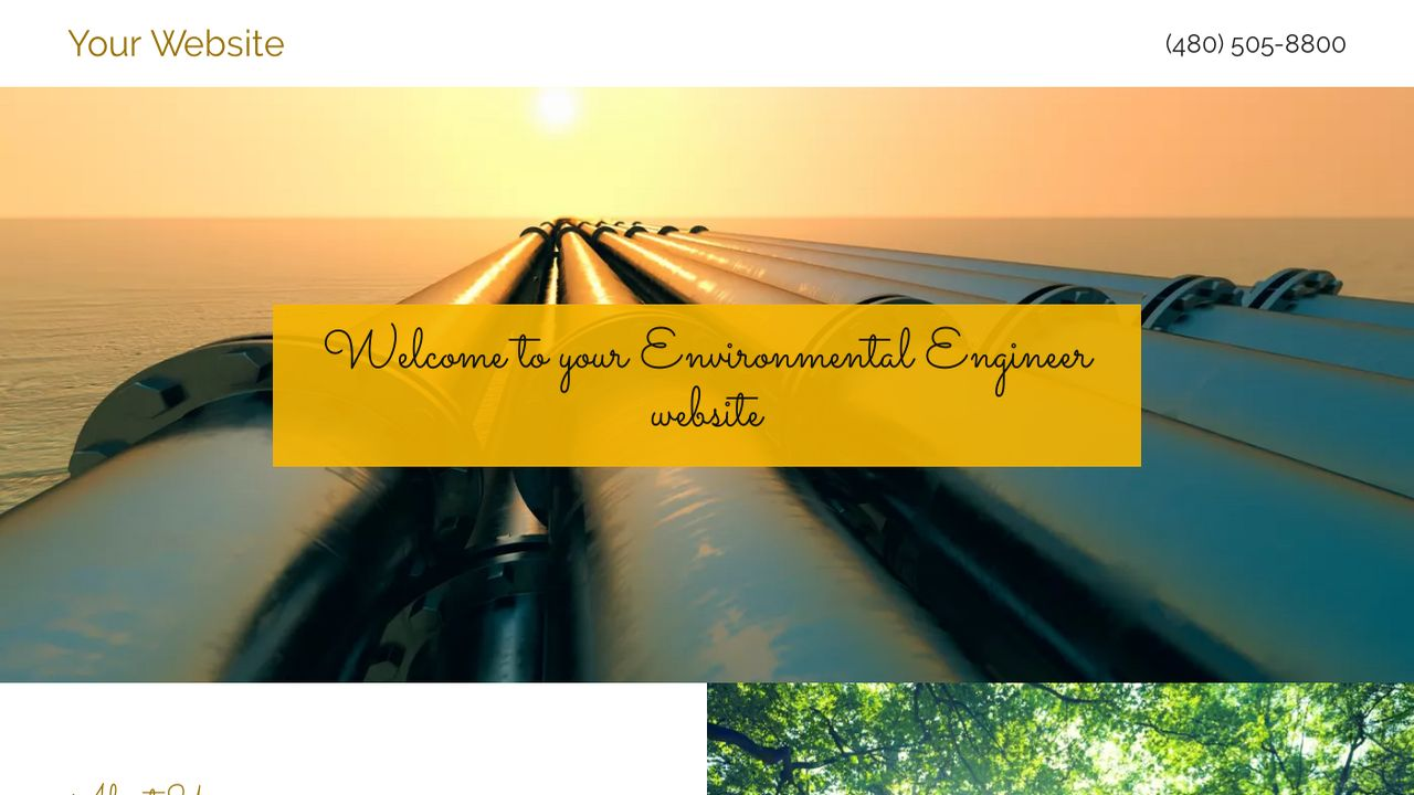 Environmental Engineer Website: Example 8