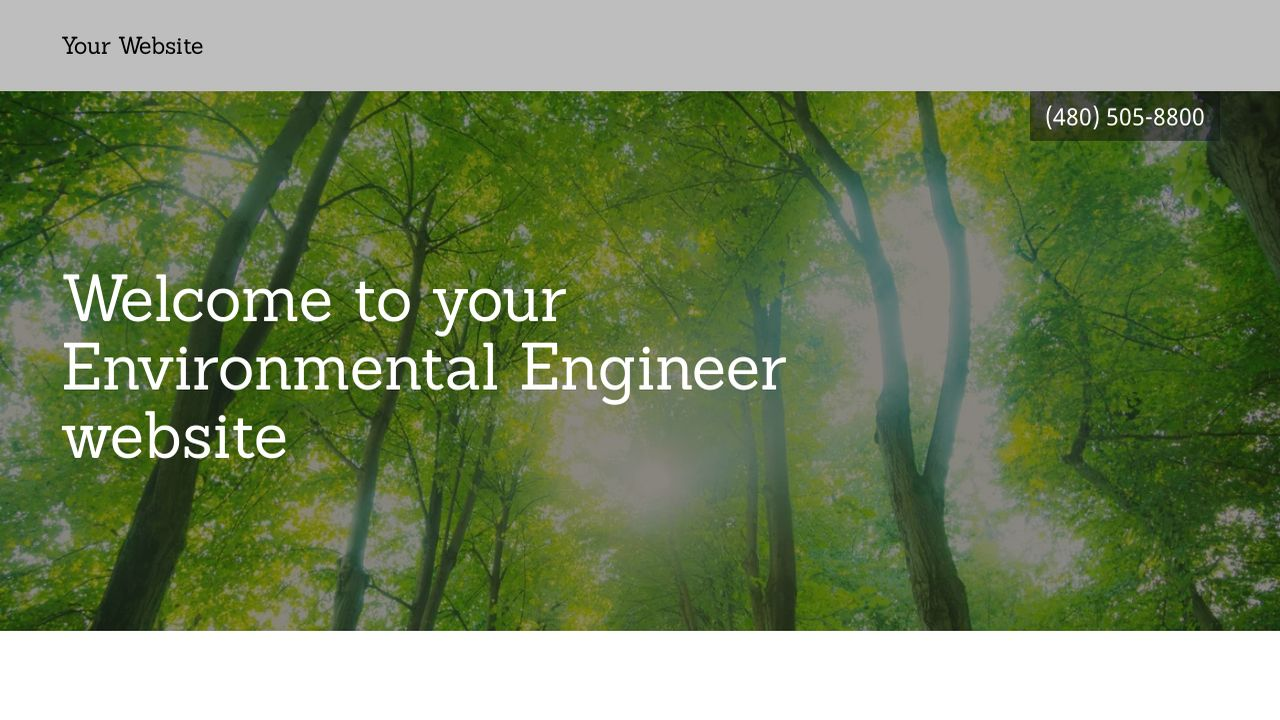 Environmental Engineer Website: Example 9
