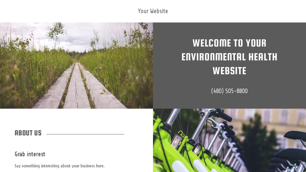 example 11 environmental health website template