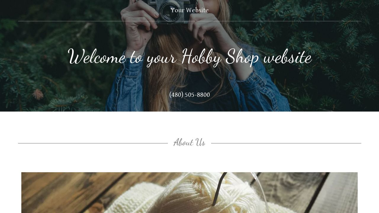 Hobby Shop Website: Example 7