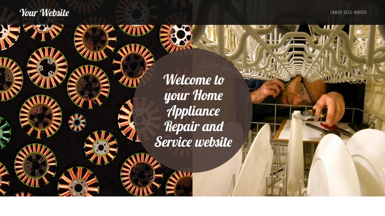 Home Appliance Repair and Service Website: Example 11