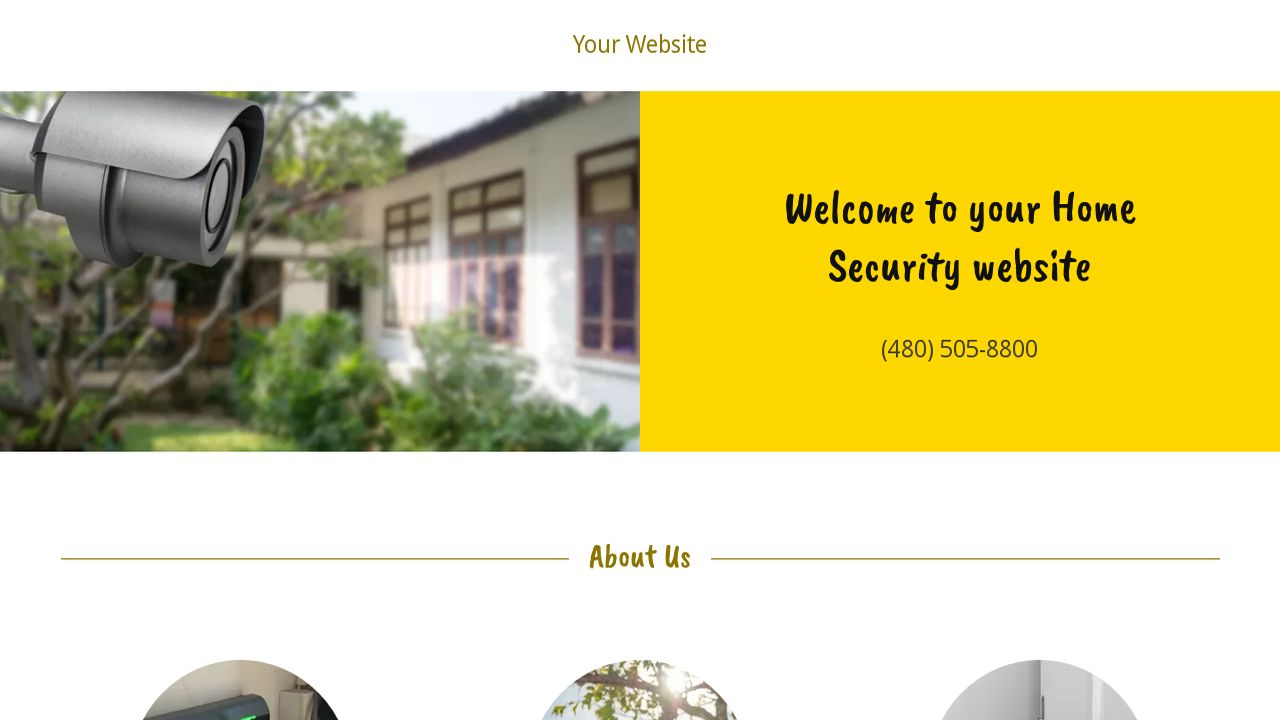 Home Security Website: Example 4