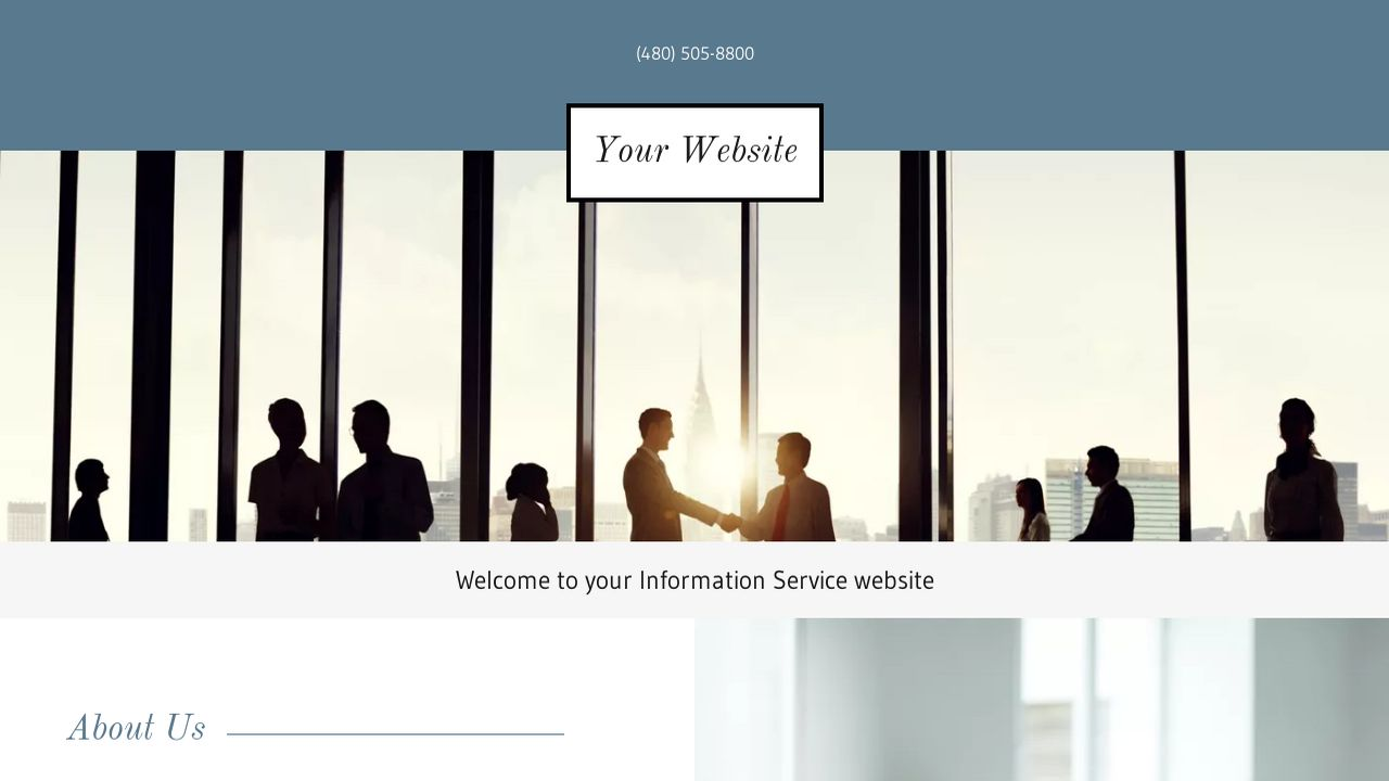 Information Service Website: Example 1