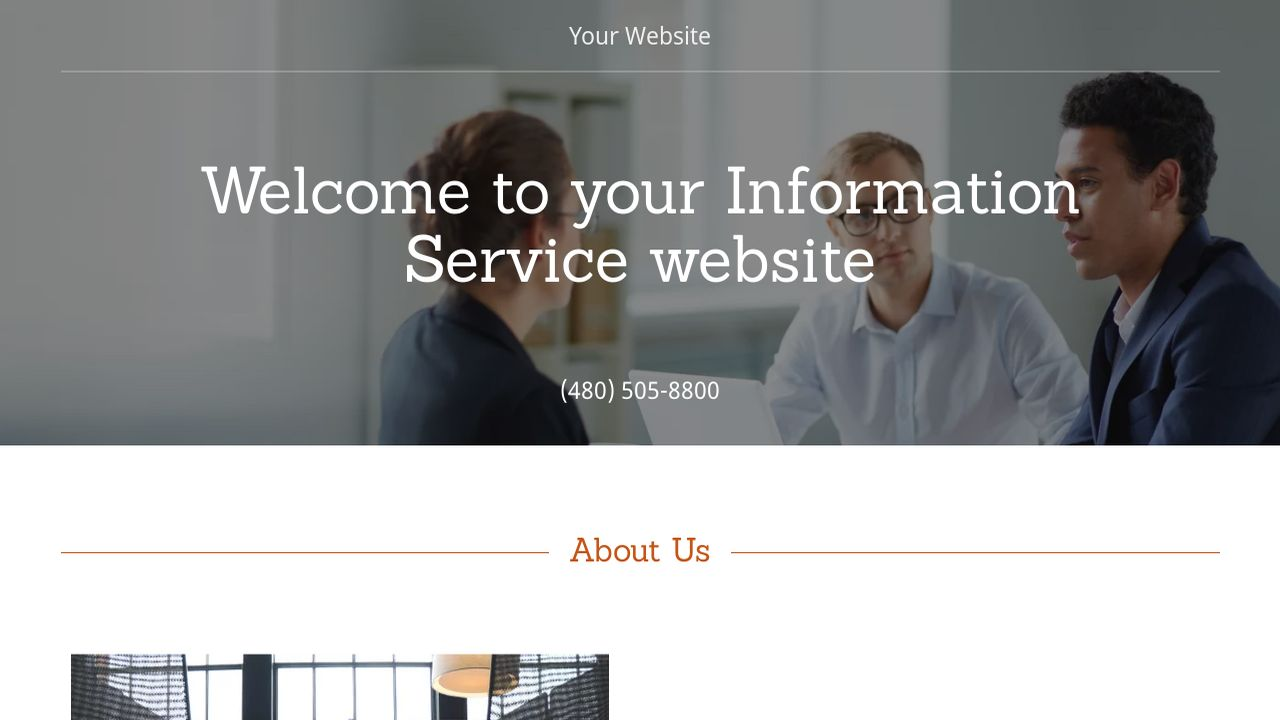 Information Service Website: Example 18