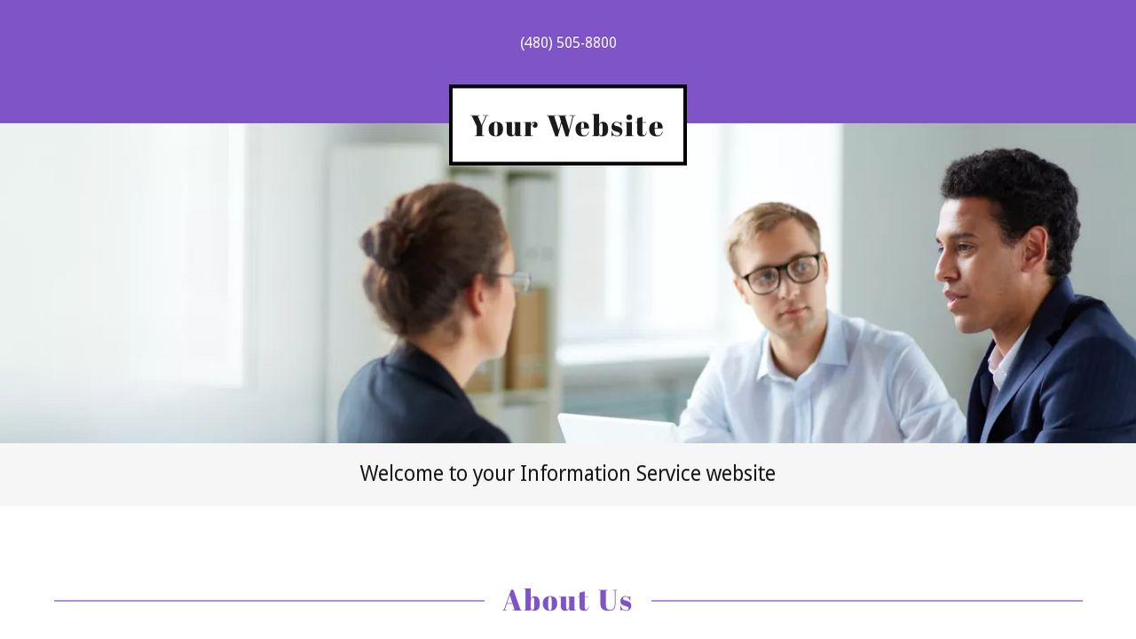 Information Service Website: Example 8