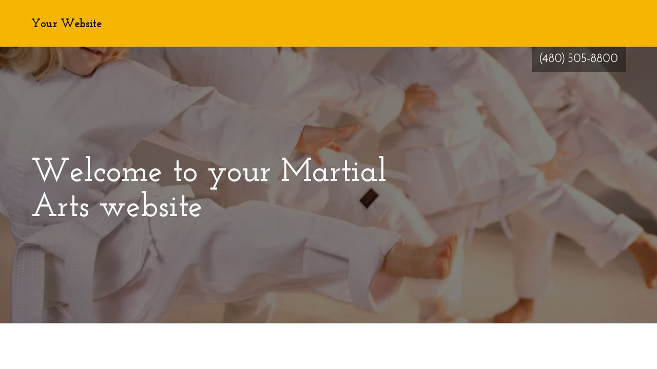 Martial Arts Example 1
