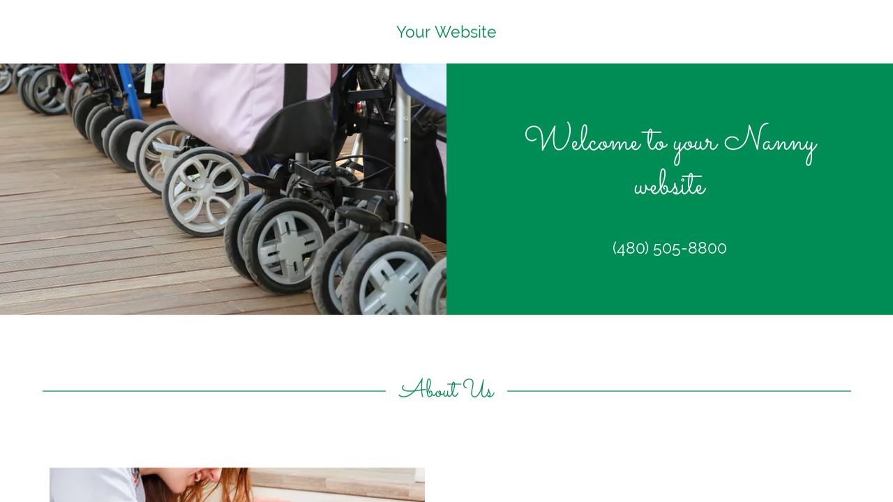 Nanny Website: Example 11