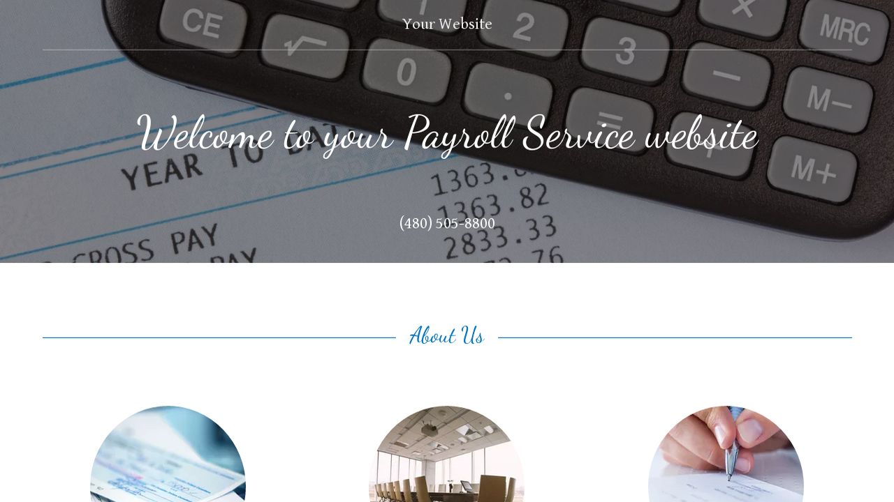 Payroll Service Website: Example 4