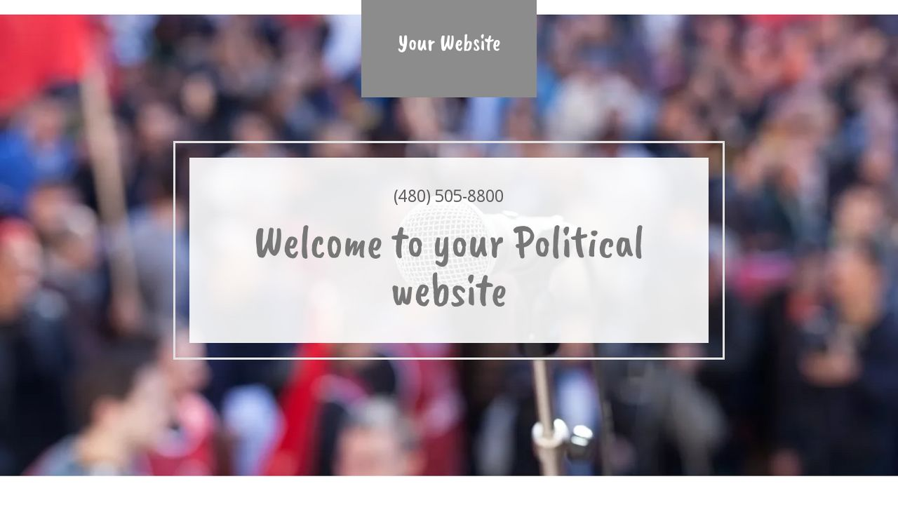 Political Website: Example 14
