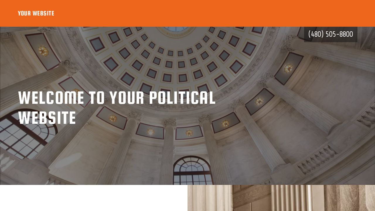 Political Website: Example 17