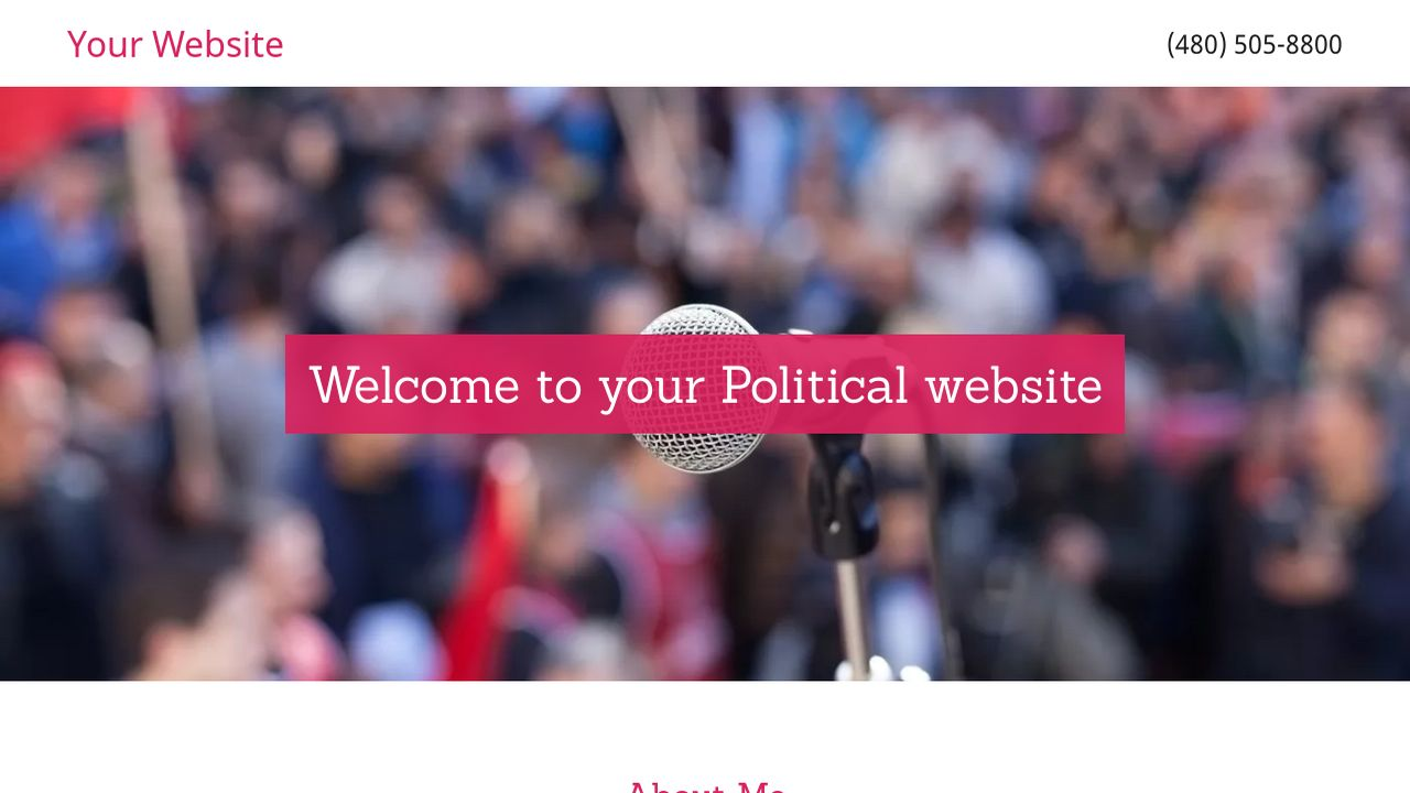 Political Website: Example 5