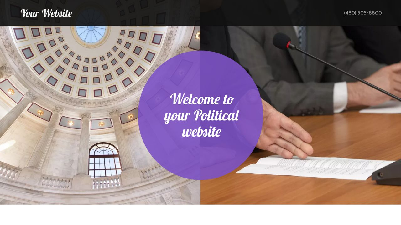Political Website: Example 8