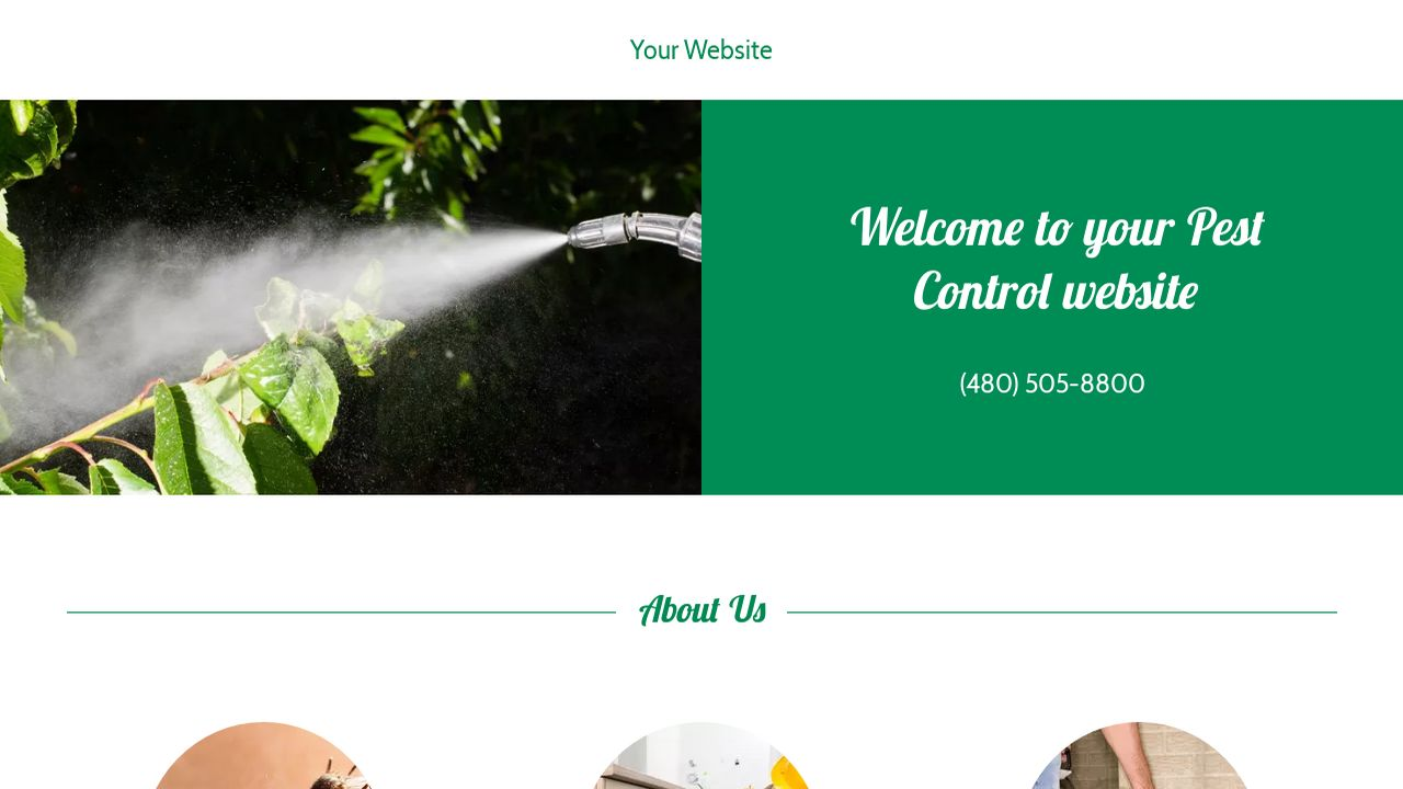 example 17 pest control website template godaddy. Black Bedroom Furniture Sets. Home Design Ideas