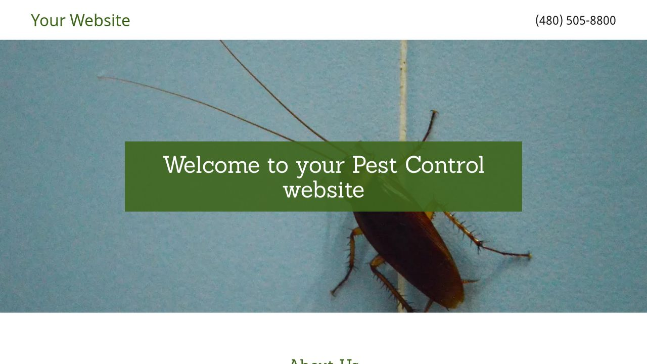 pest control website templates godaddy. Black Bedroom Furniture Sets. Home Design Ideas
