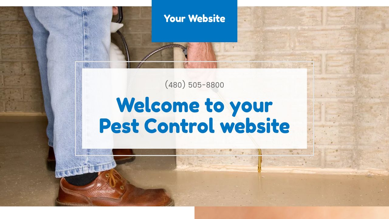 example 11 pest control website template godaddy. Black Bedroom Furniture Sets. Home Design Ideas