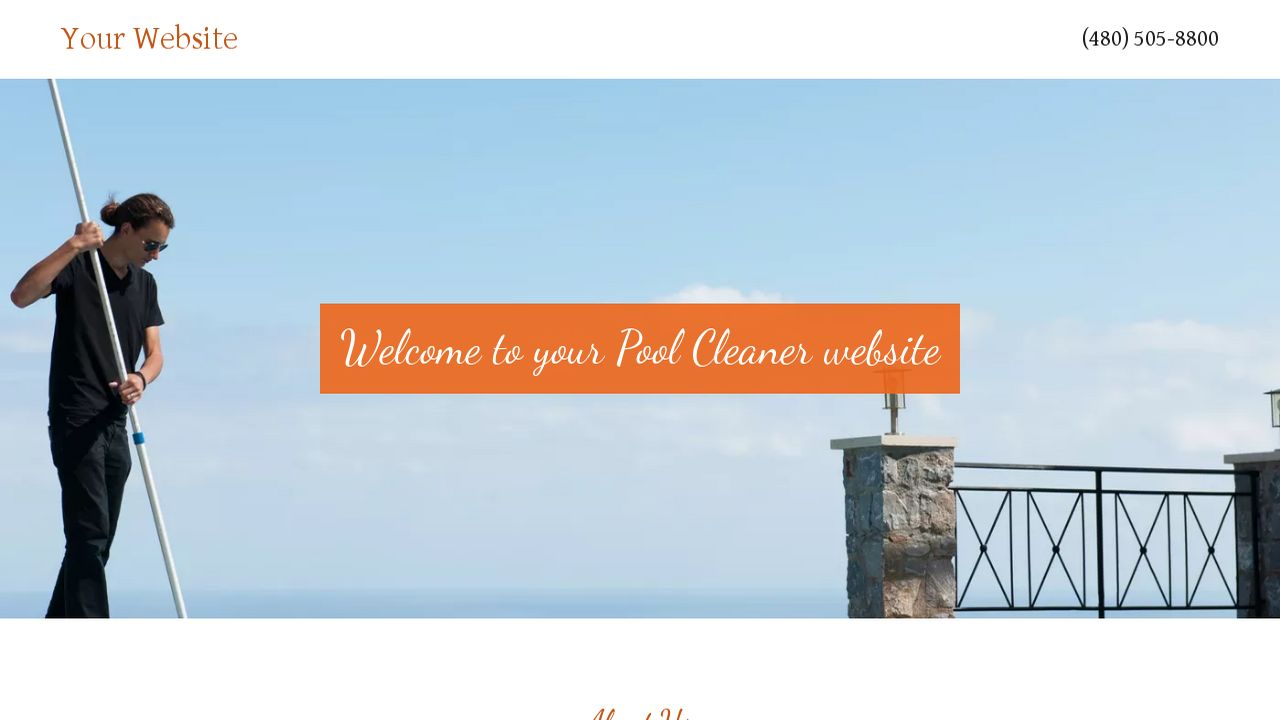 Pool Cleaner Website: Example 1