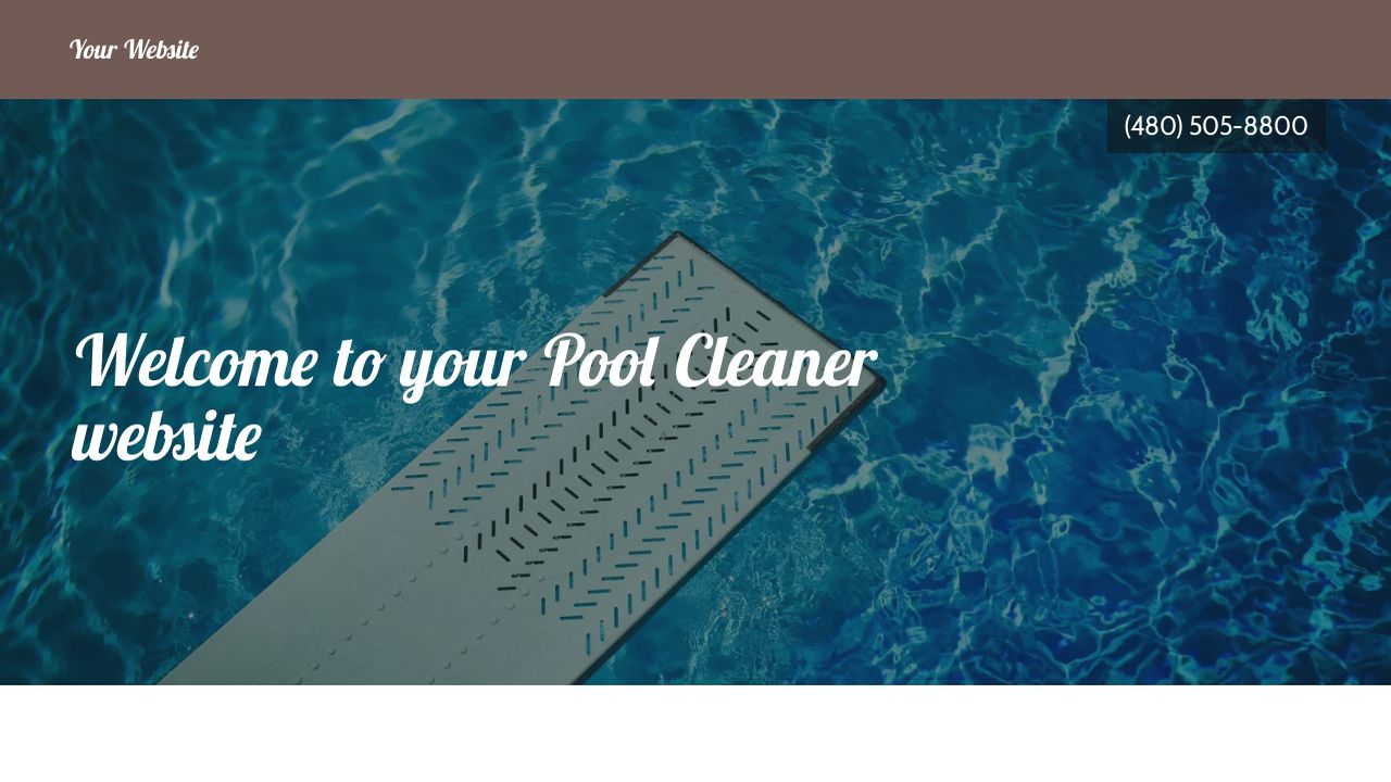 Pool Cleaner Website: Example 14
