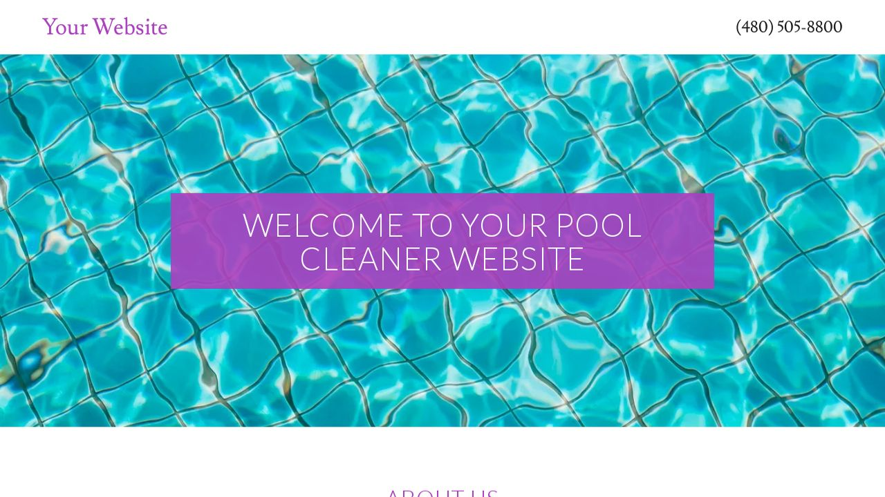 Pool Cleaner Website: Example 15
