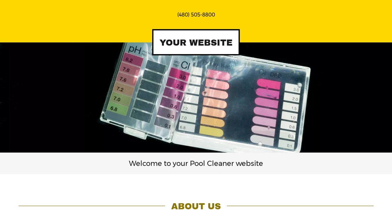 Pool Cleaner Website: Example 18