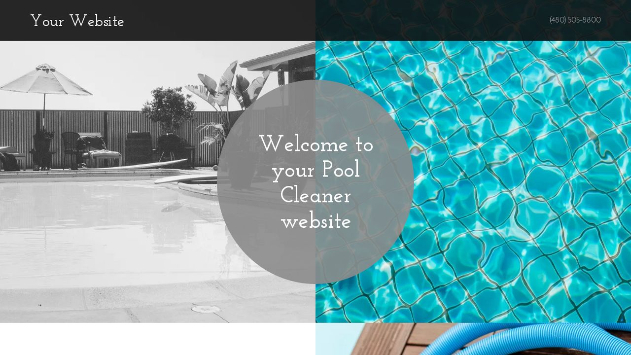 Pool Cleaner Website: Example 2