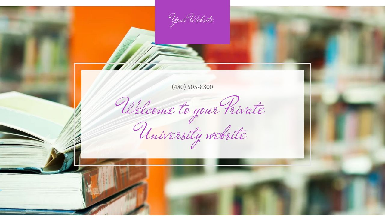 Private University Website: Example 10