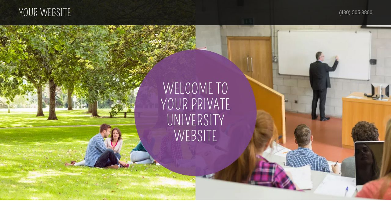 Private University Website: Example 12