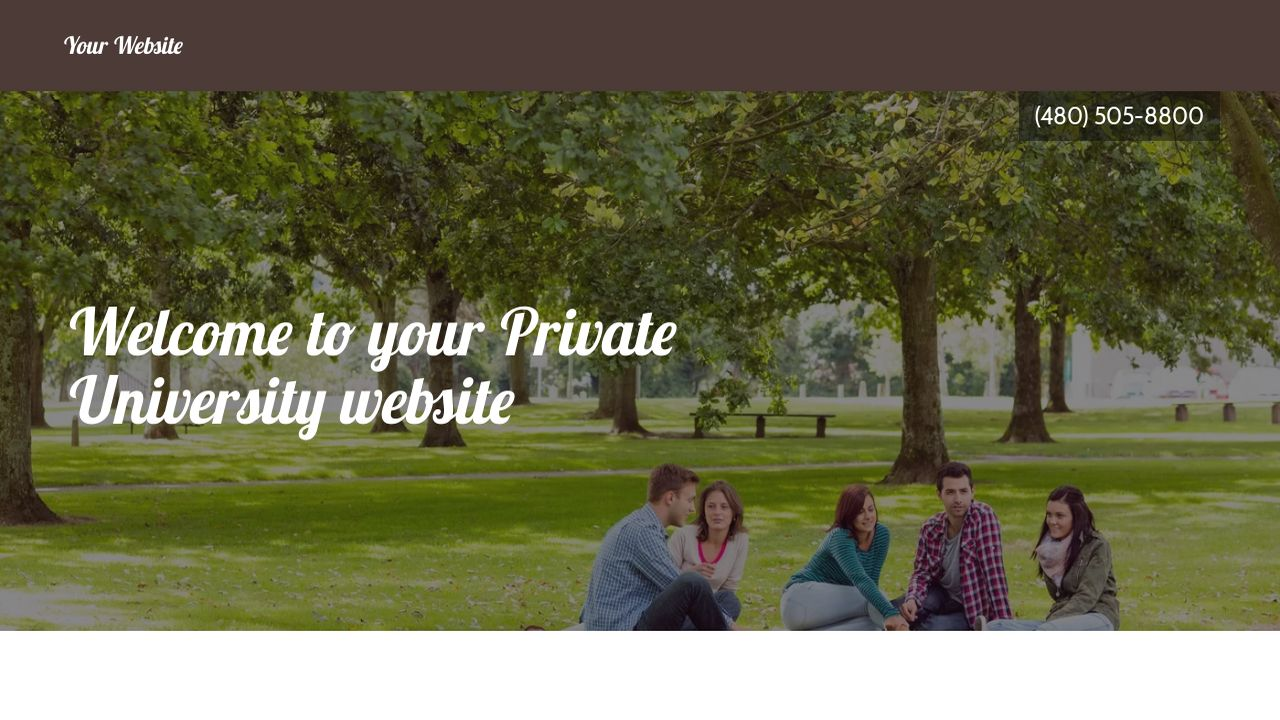 Private University Website: Example 14