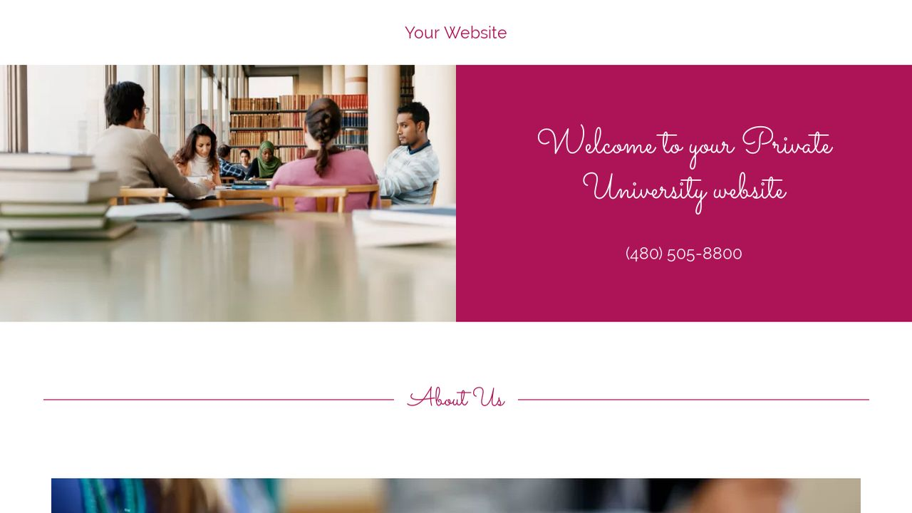 Private University Website: Example 18