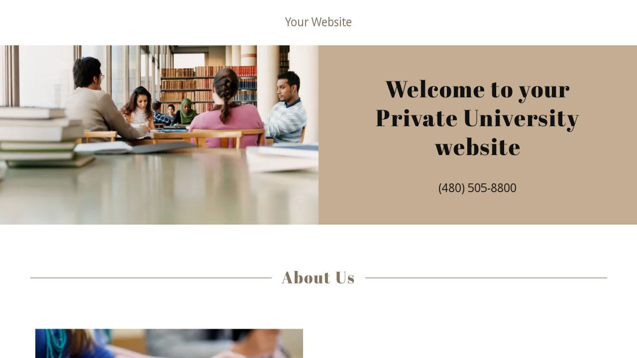 Private University Website: Example 4
