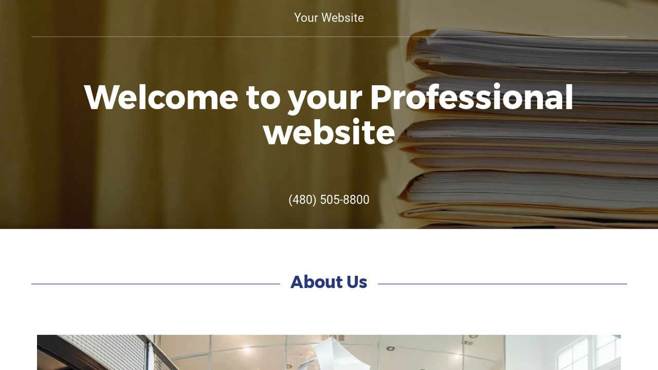 Professional Website: Example 10