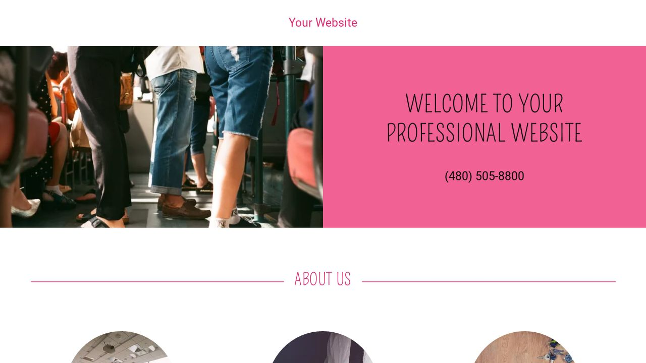 Professional Website: Example 12