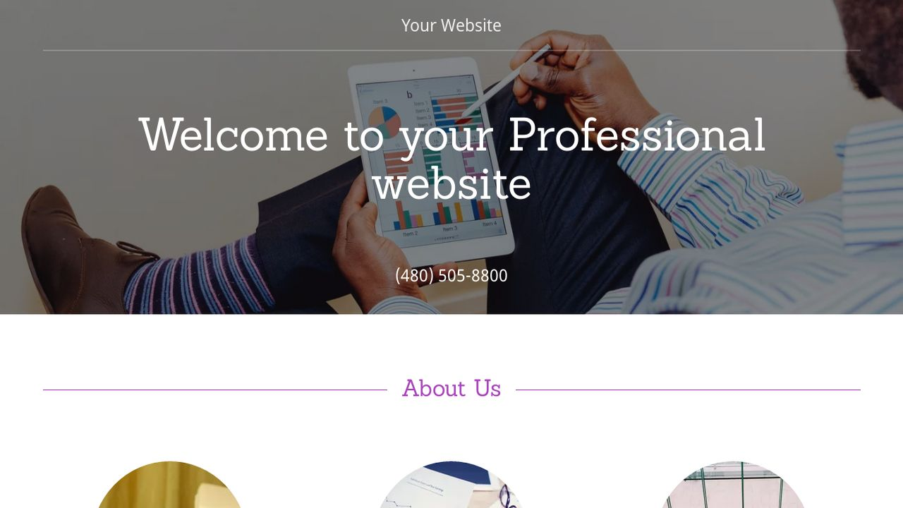 Professional Website: Example 17