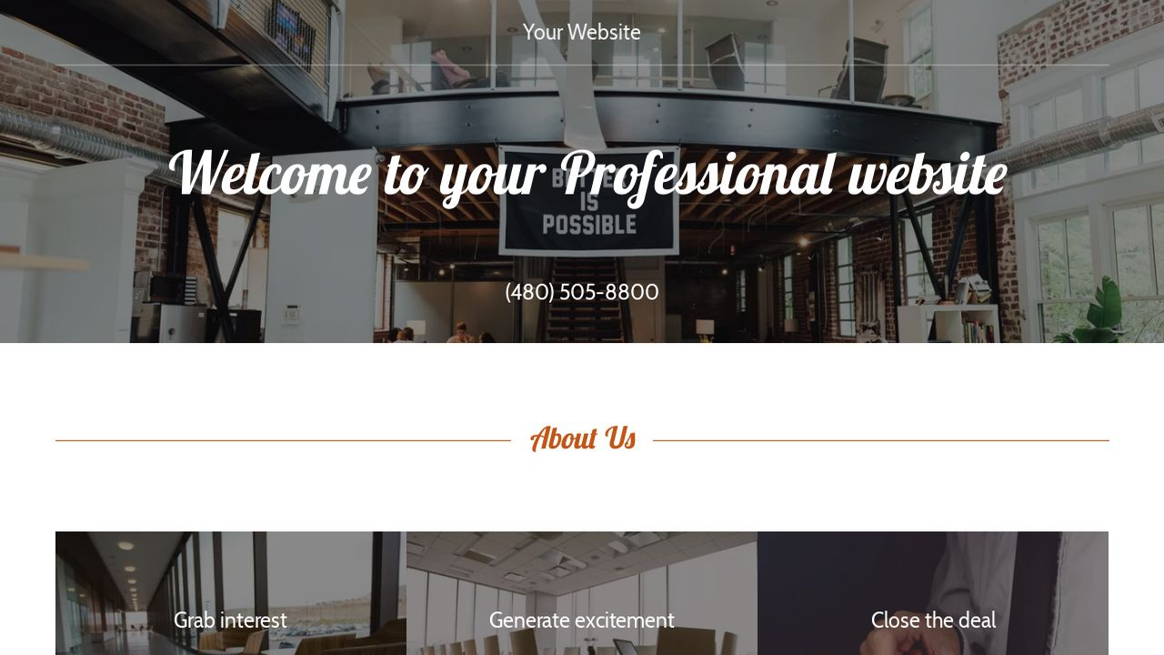 Professional Website: Example 3