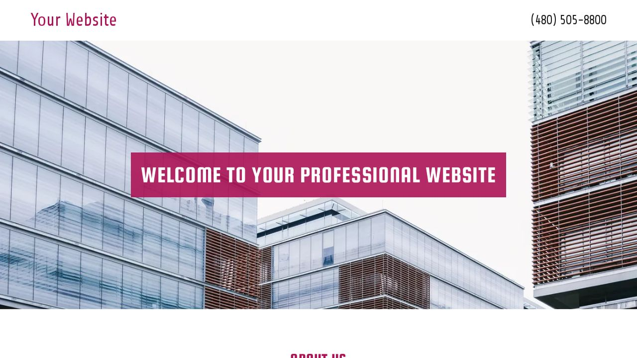 Professional Website: Example 7