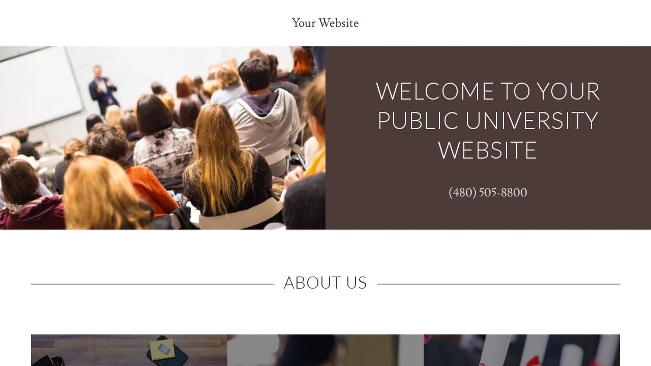 Public University Website: Example 1
