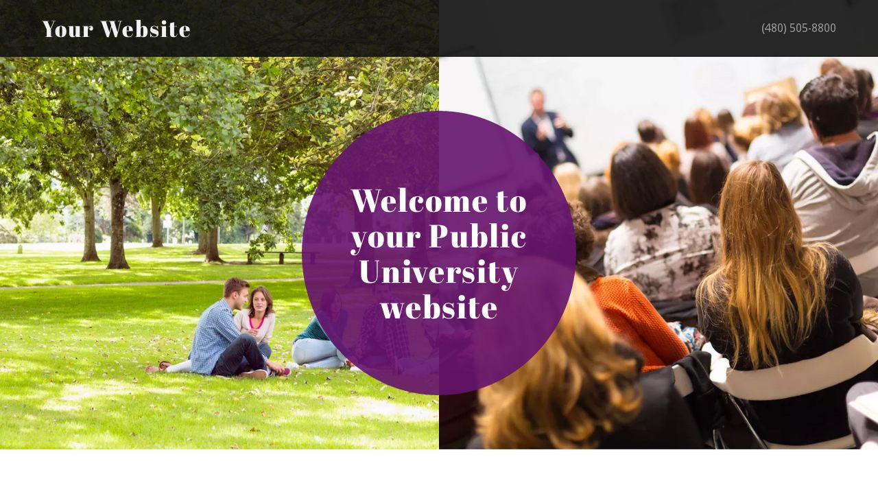 Public University Website: Example 11