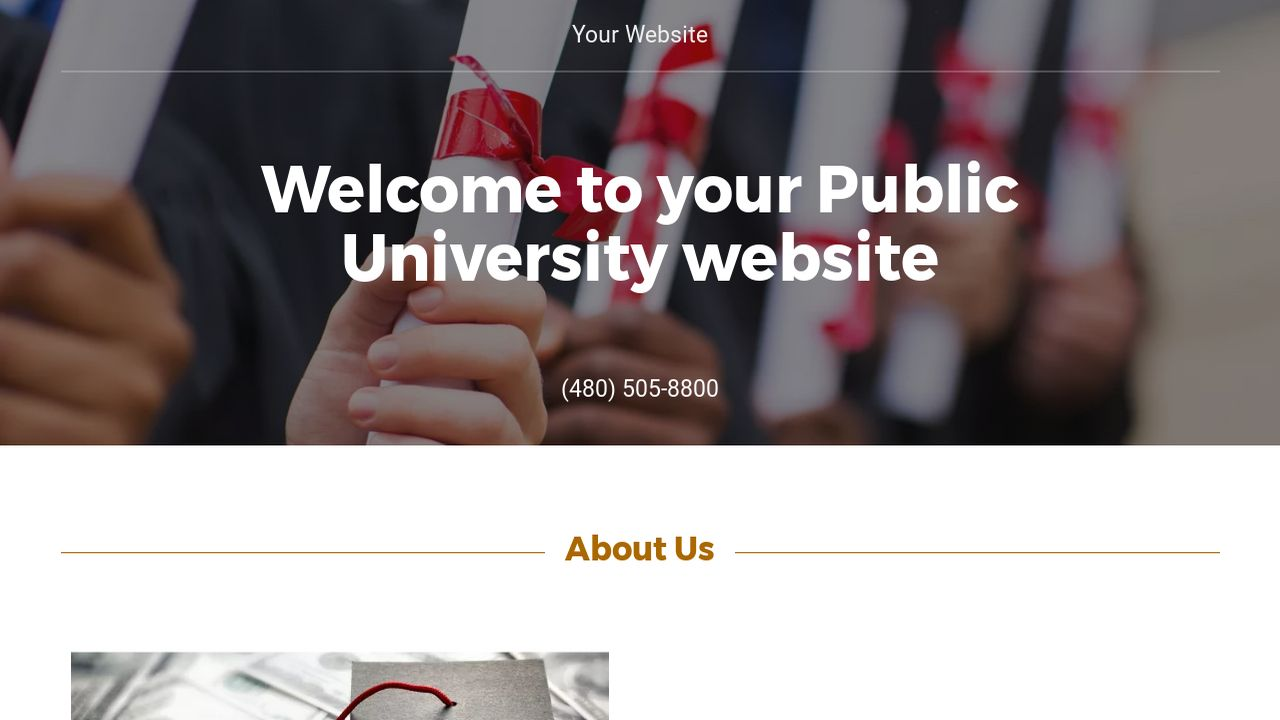 Public University Website: Example 13